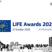 life_awards_2020_visual
